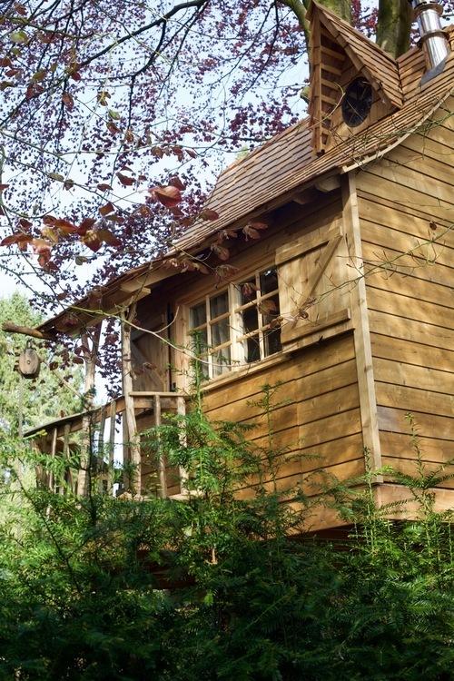 House@tree - Boomhutten