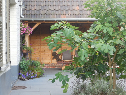 House@tree - Tuinhuizen